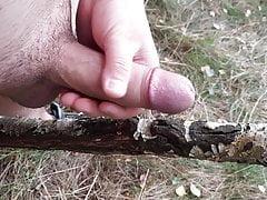Cum on a Stick