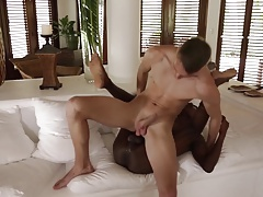 Twinks destroyed 3